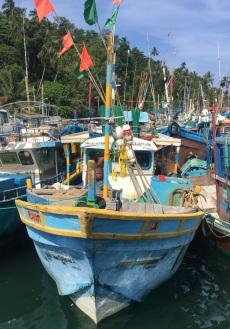 14 reasons to travel Sri Lanka